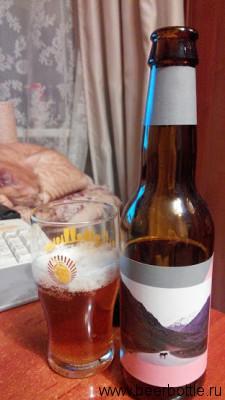 Пиво Mikkeller Tiger Baby