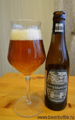 Пиво Barry Island IPA