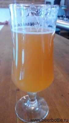 Пиво Willem Van Oranje