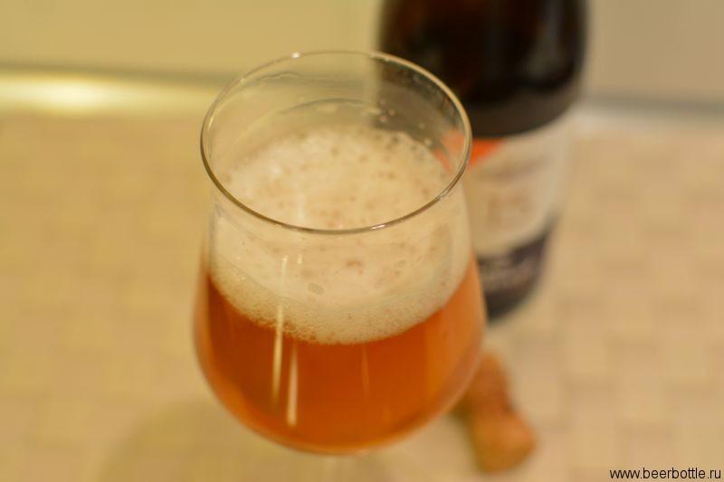 Пиво Василий Островский