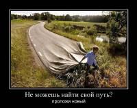 Свой путь