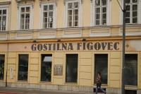 Гостиница Figovec