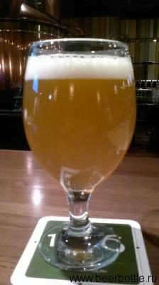 Пиво Blanche 1516