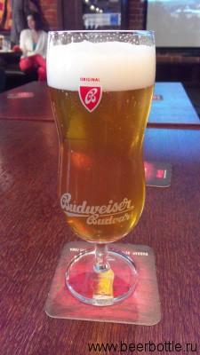 Пиво Budweiser Premier Select