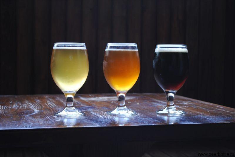 Пиво оценки