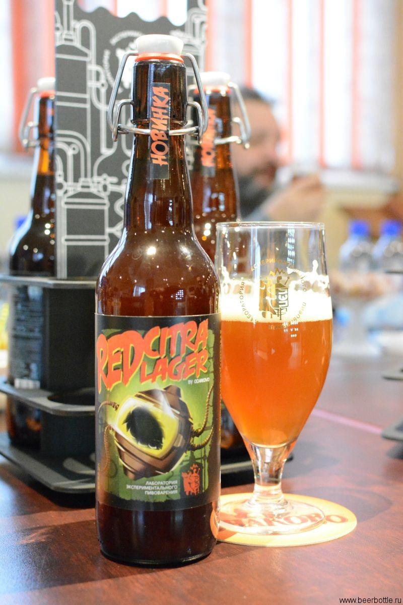 Пиво Red Citra Lager