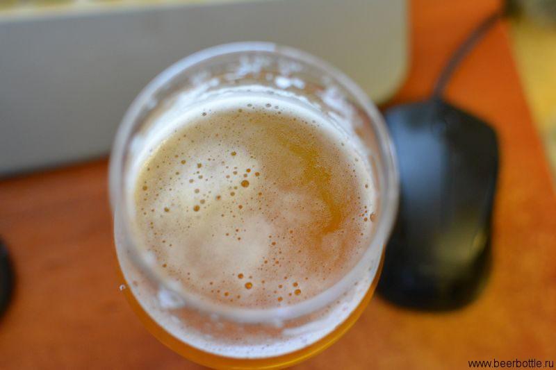 Пиво Mikkeller Nuclear Hop Assault