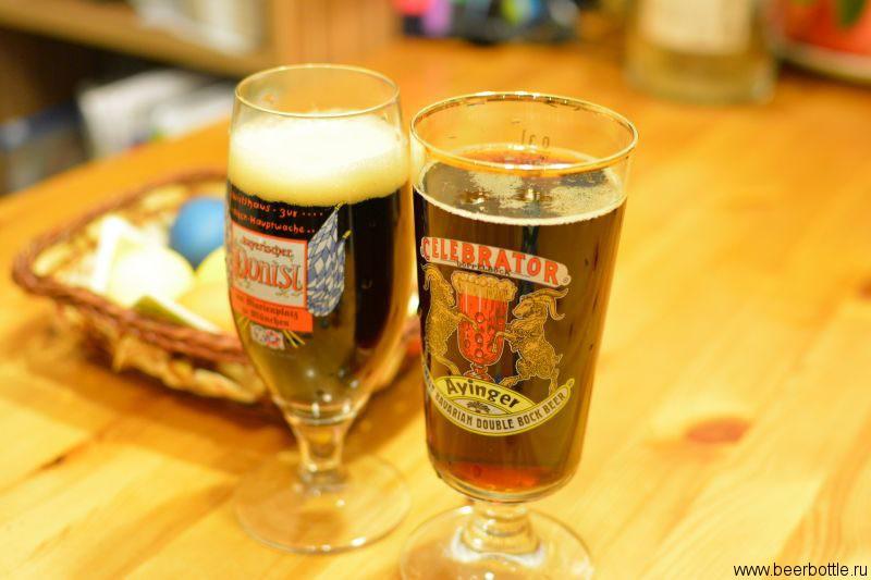 Пиво Ayinger Winter Bock vs Celebrator