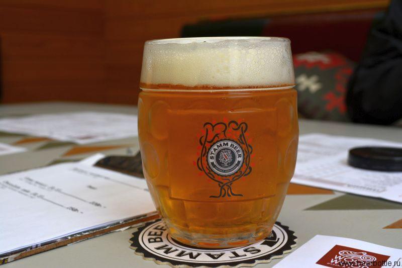 Пиво Stamm Beer