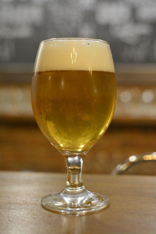 Пиво Kynšperský Zajíc 12° světlý ležák