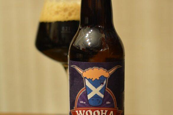 Пиво WooHa Porter